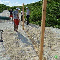 sea turtle protection area construccion 23 05 2016 2