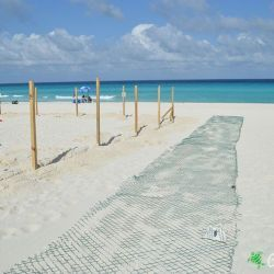 sea turtle protection area construccion 23 05 2016 7