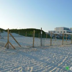 sea turtle protection area construccion 23 05 2016 9