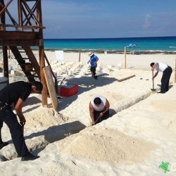 sea turtle protection area expansion 24 07 2015
